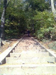 113 trepte deschid drumul spre cetate